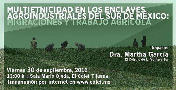 Banner Multietnicidad en los enclaves agroindustriales del sur de México:  Migraciones y trabajo agrícola