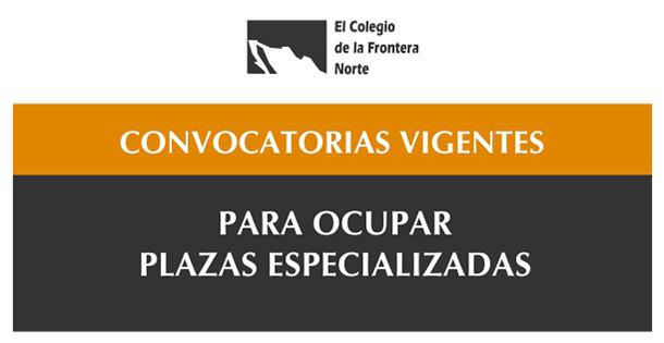Banner Convocatorias vigentes