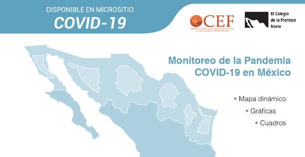 Banner Monitoreo del Covid19 en México